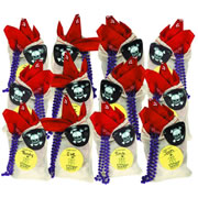 Treasure Hunt Loot Bags - Set of 12