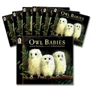Owl Babies Big Book Read-Along Set (Set of 7)
