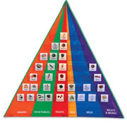 Food Pyramid Pocket Chart