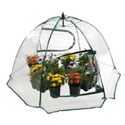 "3 years & up. Bring your classroom outdoors with this portable greenhouse. Makes plant growing in outdoor spaces a snap. Provides extra weather protection during colder months. The lightweight PVC with a zippered roll-to-the-side access panel is easy to open and stand up. Folds flat for storage. Measures 25""H x 43""W."