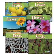 Spot the Difference: Plants Book Set (Set of 6)
