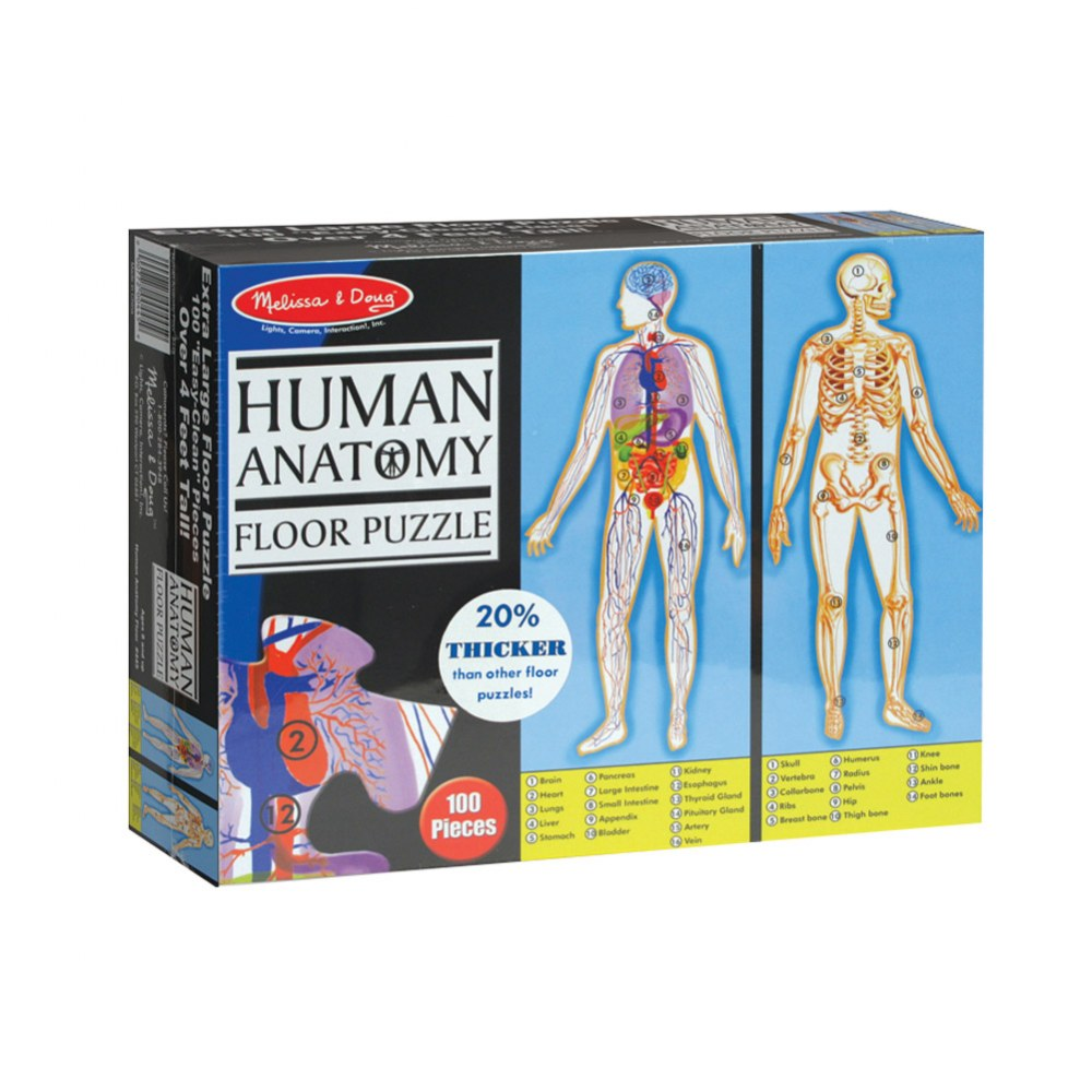 Human Body Anatomy 100 Piece Floor Puzzle