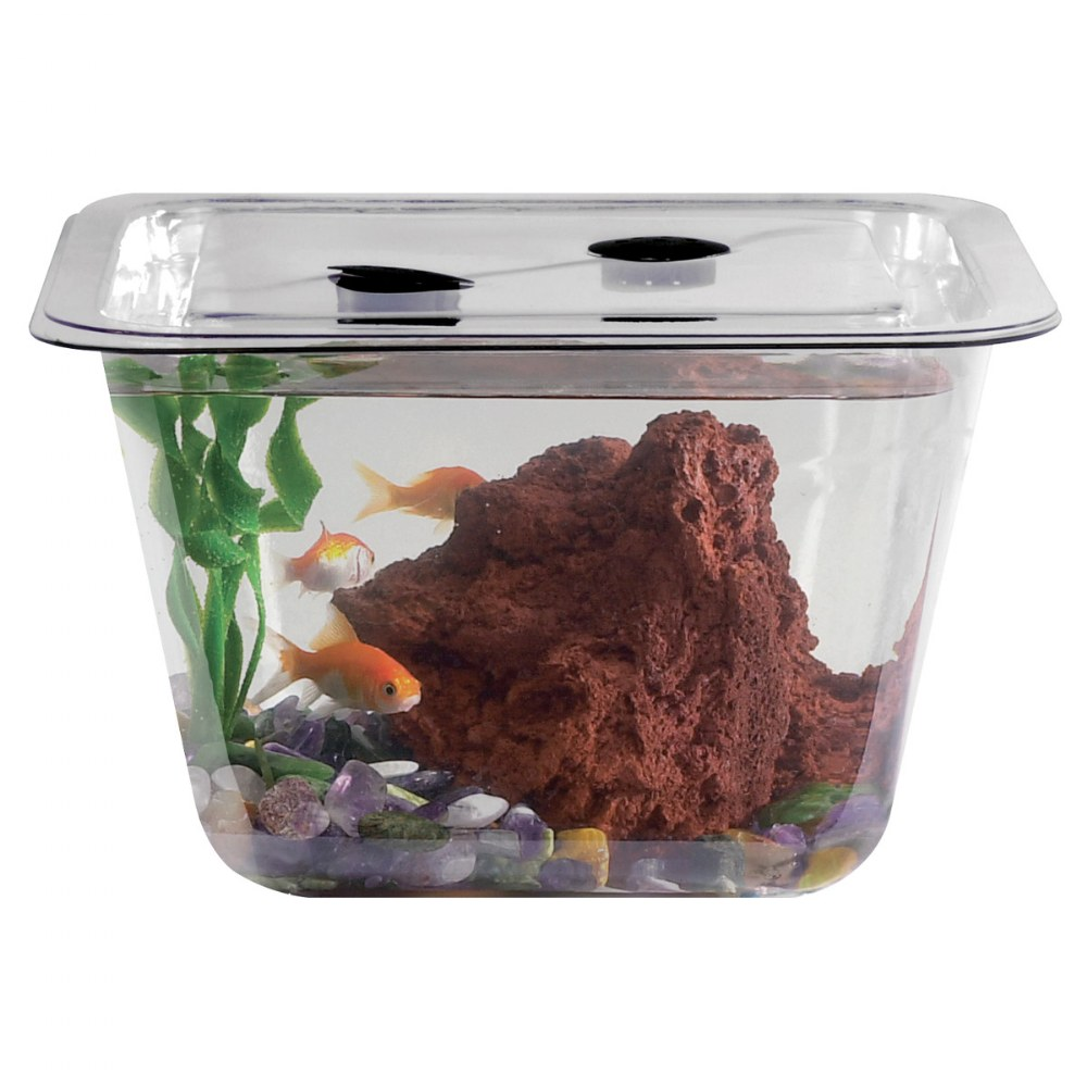 Alternate Image #2 of One Gallon Individual Aquarium/Terrarium