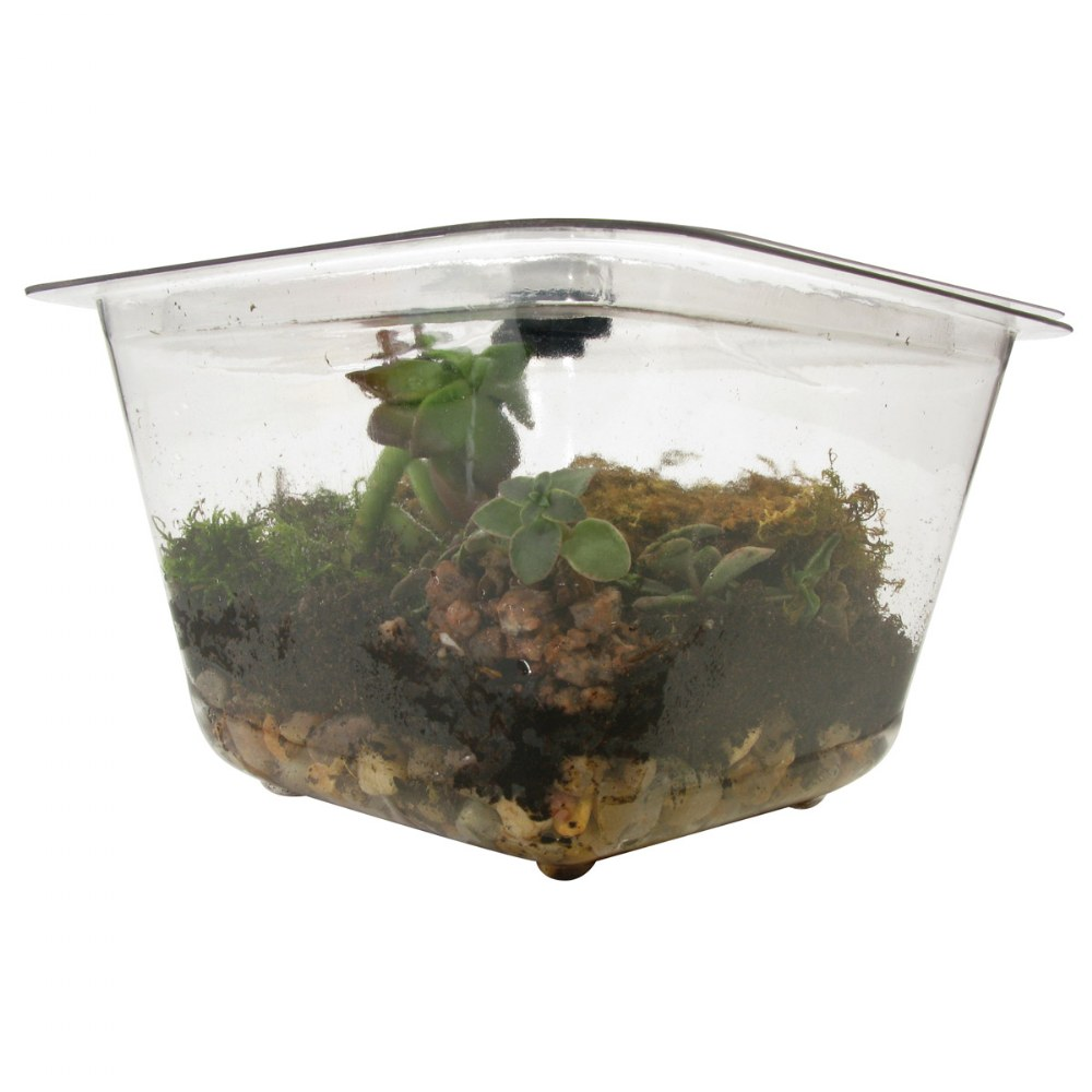 Alternate Image #5 of One Gallon Individual Aquarium/Terrarium