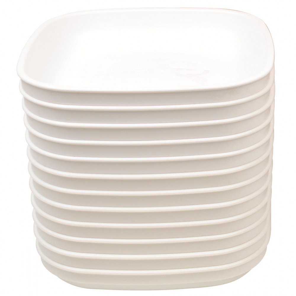 Family Style Dining Plates (Set of 12)