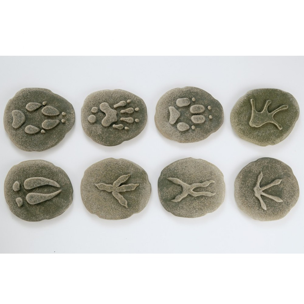 Alternate Image #2 of Woodland Footprints™ - Set of 8