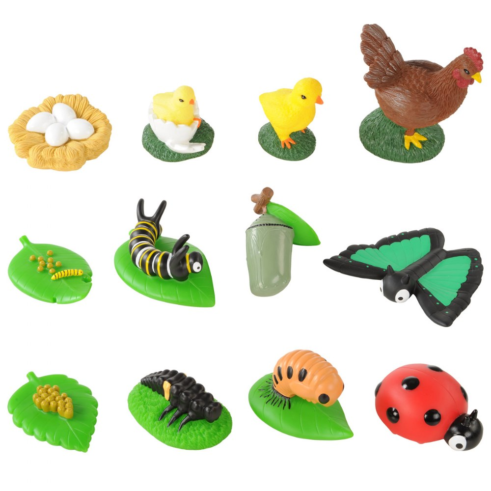 Toddler Sized Life Cycle Models - Chicken, Butterfly and Ladybug