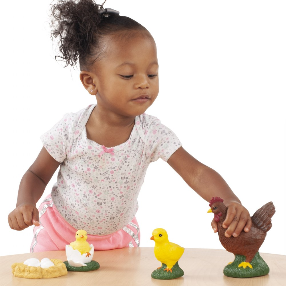 Alternate Image #4 of Toddler Sized Life Cycle Models - Chicken, Butterfly and Ladybug