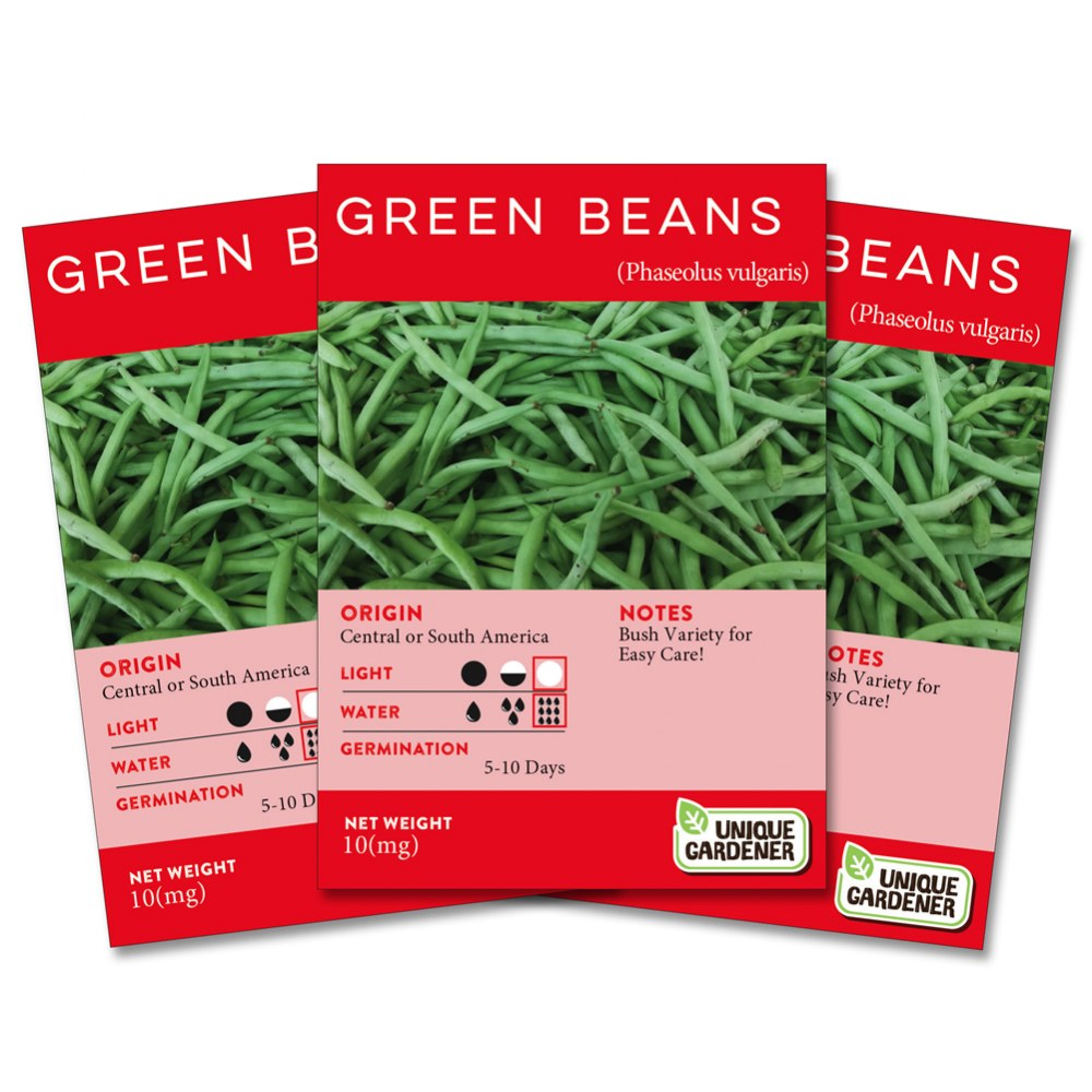Bush Green Beans Seeds 3-Pack