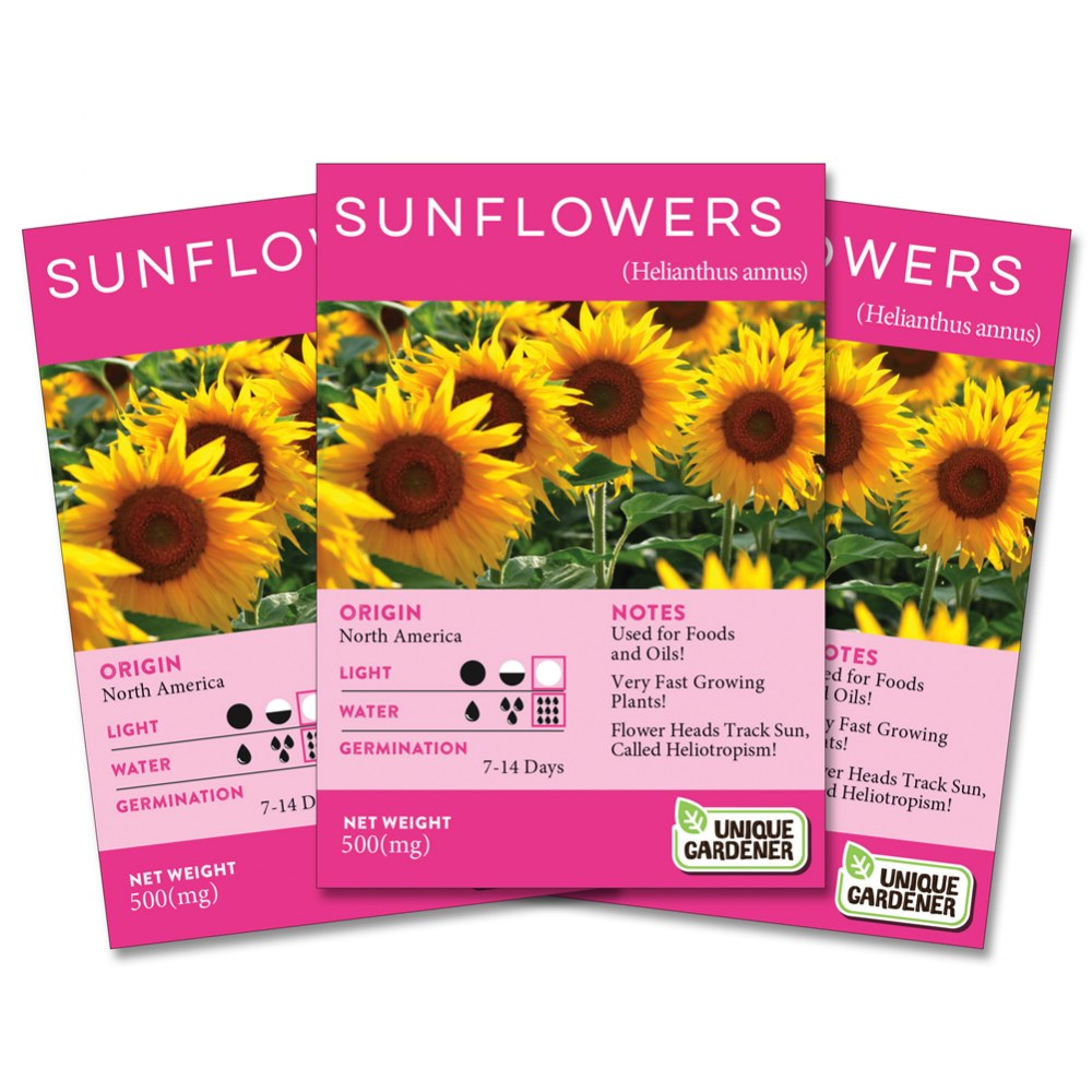 Dwarf Sunflower Seeds 3-Pack