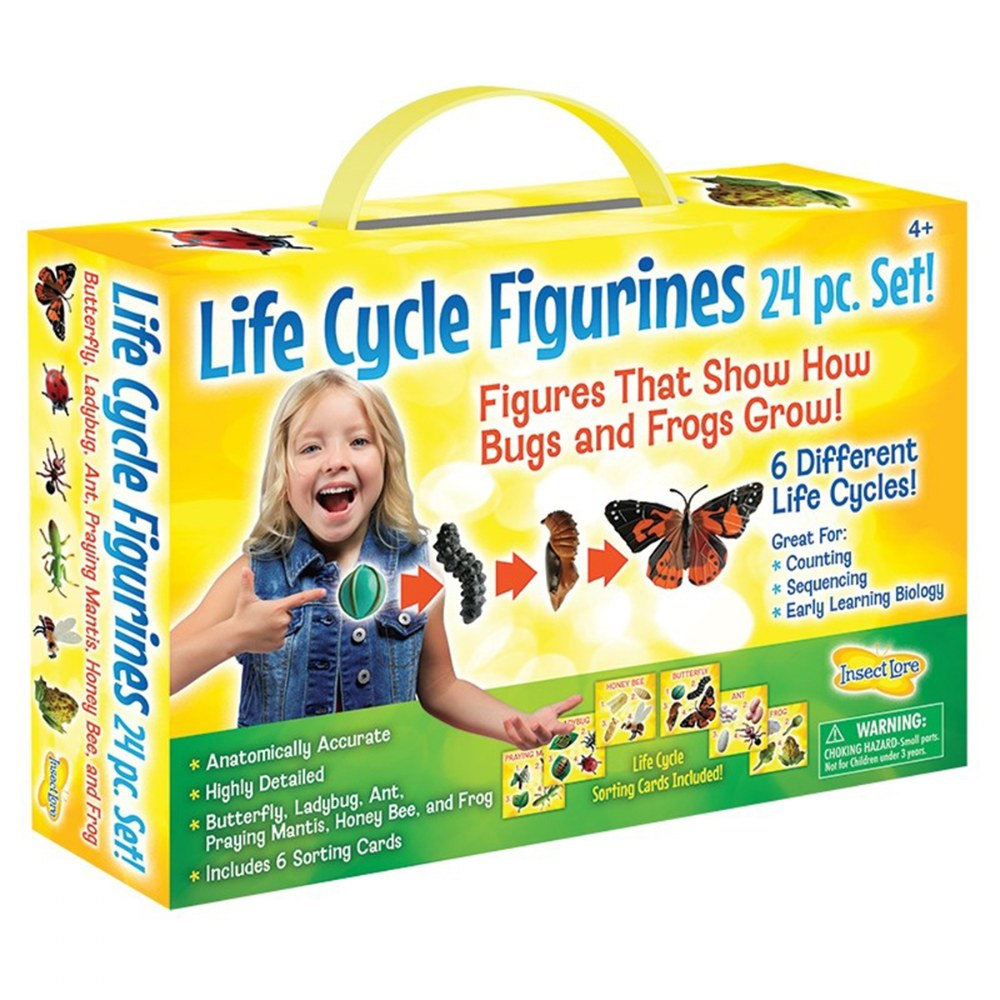 Alternate Image #1 of Life Cycle Figurines - 24 Pieces