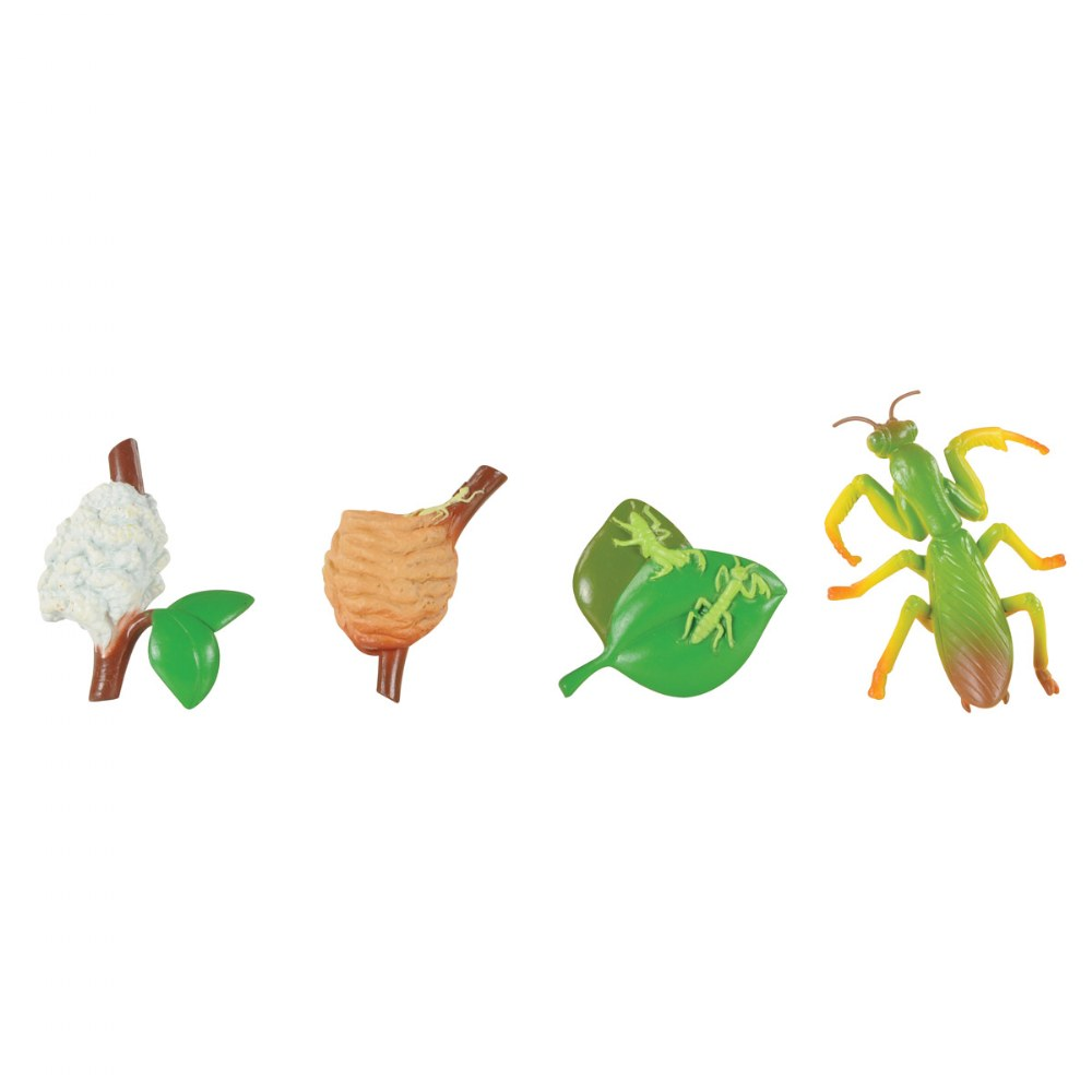Alternate Image #8 of Life Cycle Figurines - 24 Pieces