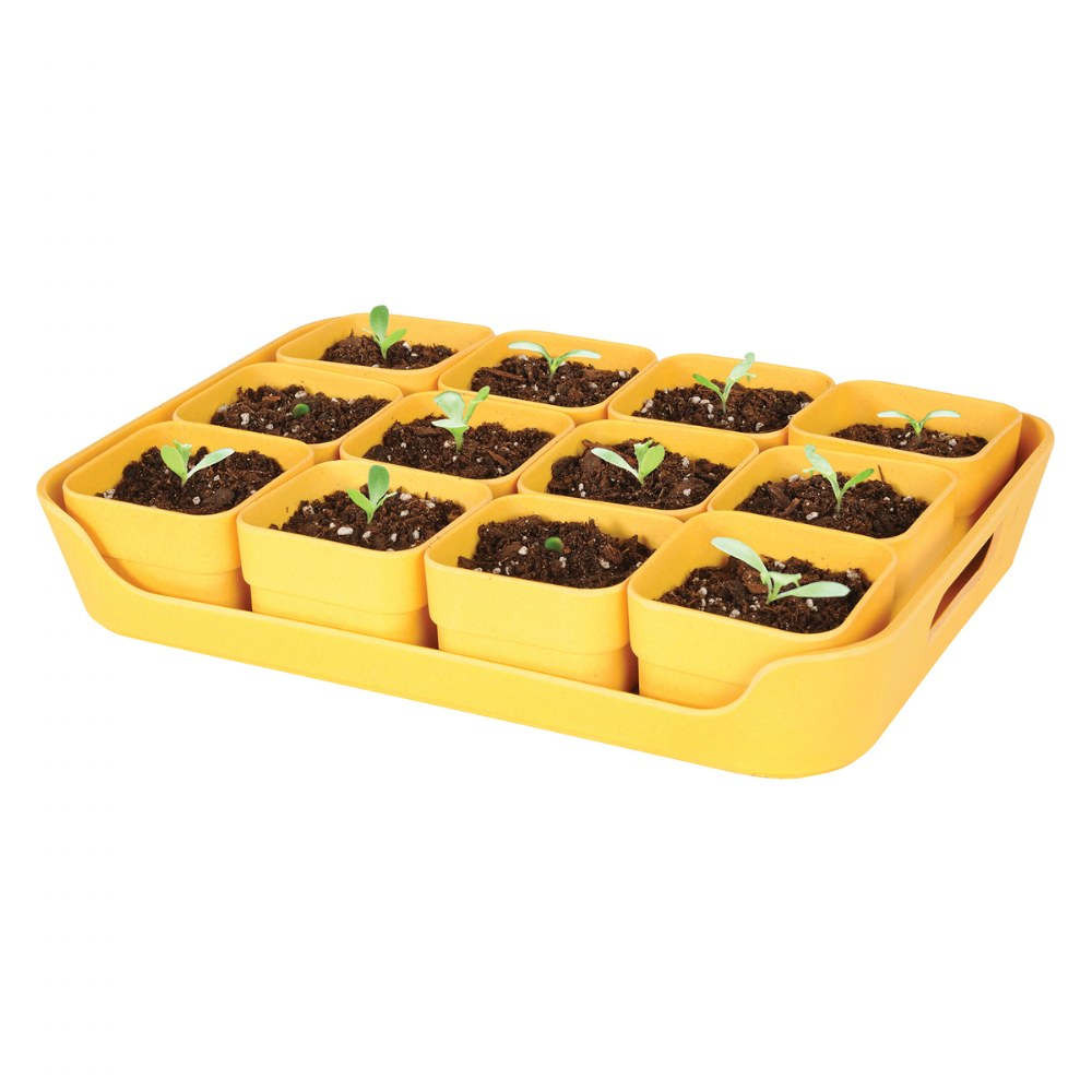 Alternate Image #1 of Eco Planter Pots and Tray Sets