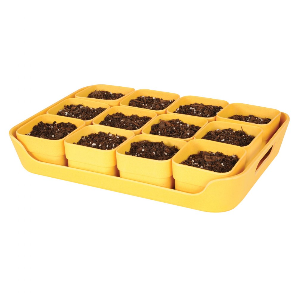 Alternate Image #2 of Eco Planter Pots and Tray Sets