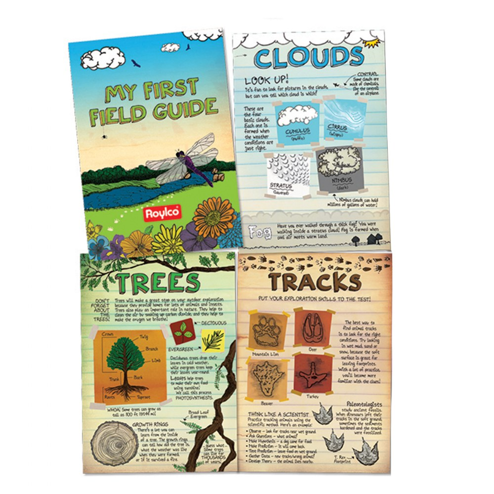 Alternate Image #1 of Celebrate Nature STEAM Kit
