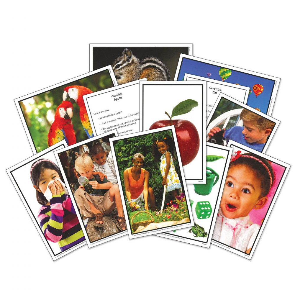 Alternate Image #2 of Early Learning Photographic Language Library Cards - PreK-K