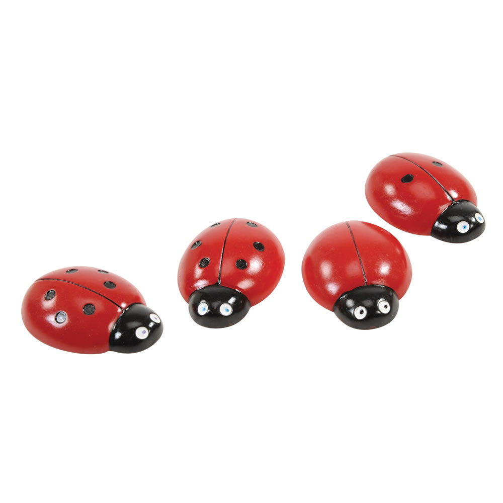 Alternate Image #2 of Ladybug Stones and Activity Cards