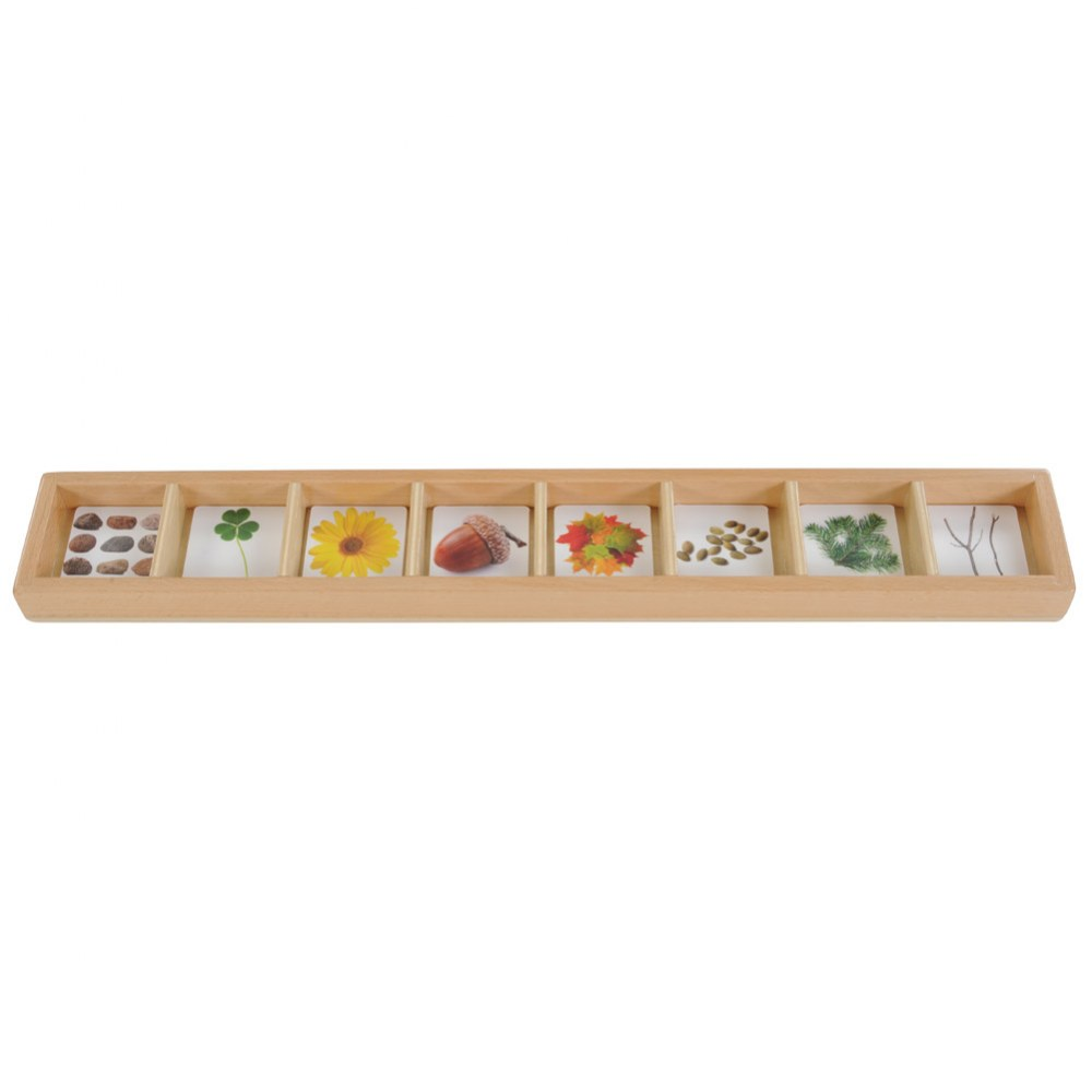 Alternate Image #3 of Nature Seek and Sort - Wooden Sorting Tray