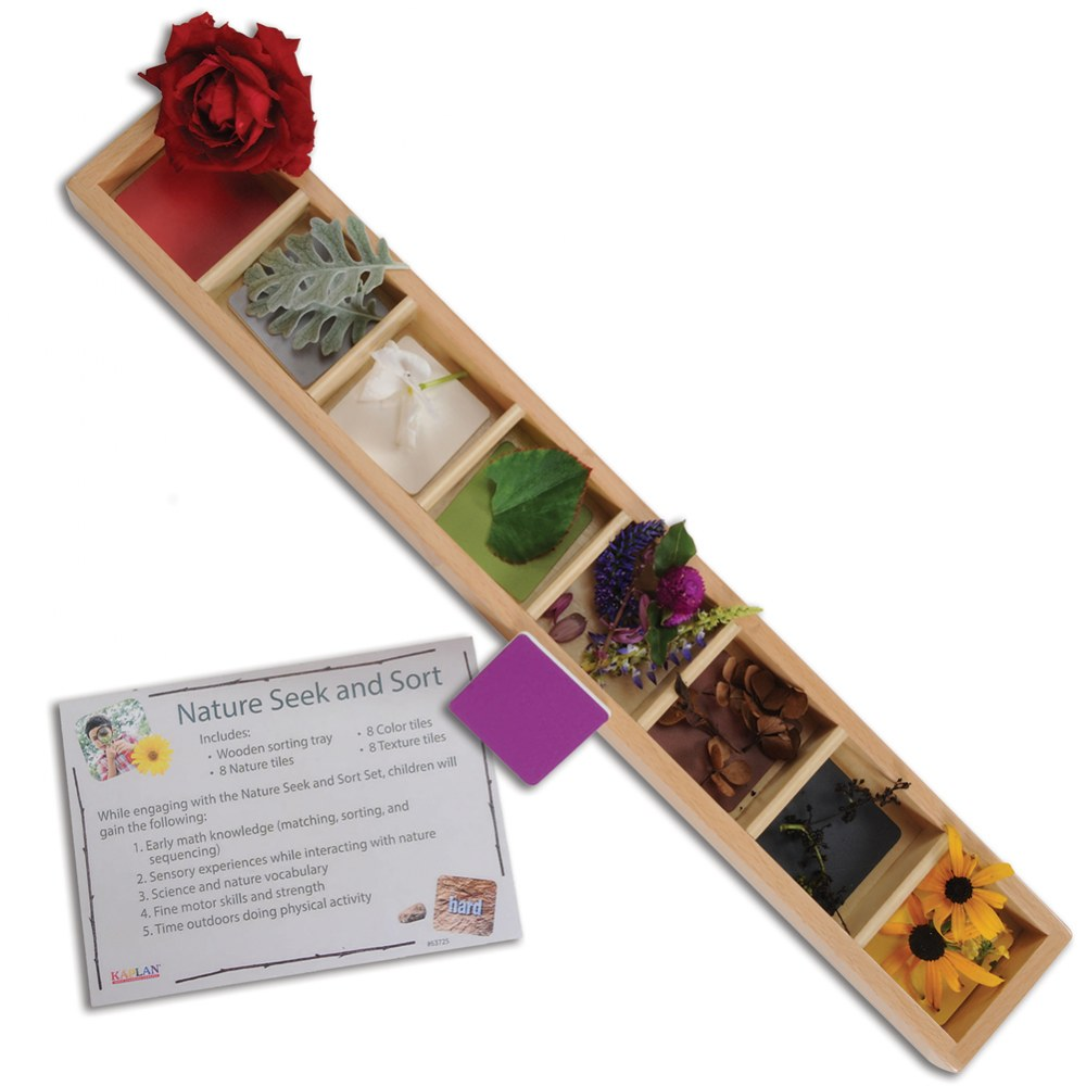 Nature Seek and Sort - Wooden Sorting Tray