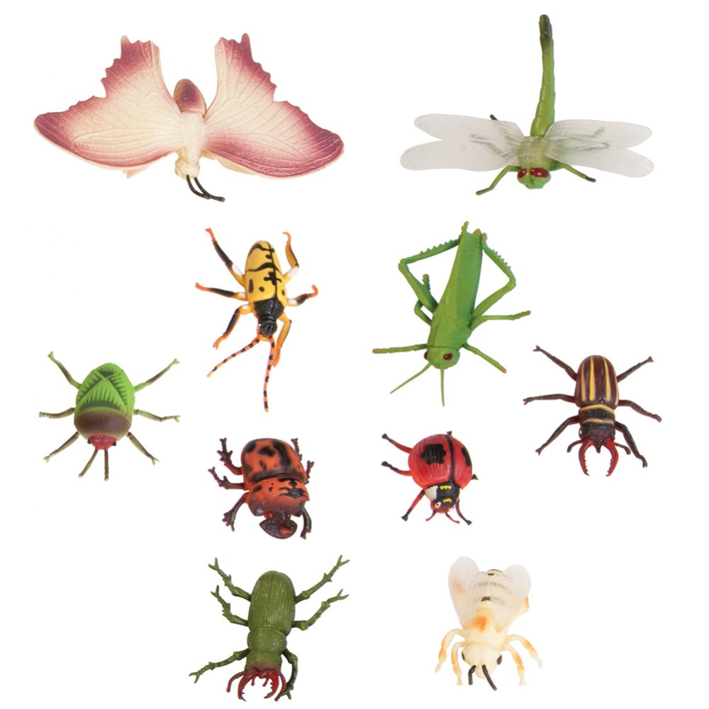 Insect Set - Set of 10
