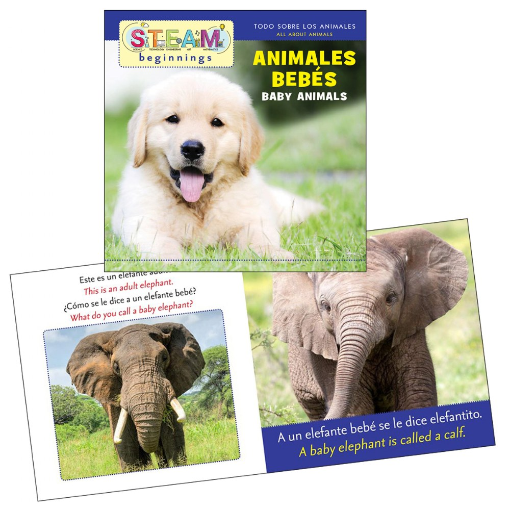 Alternate Image #4 of All About Animals Board Books - Bilingual Book Set