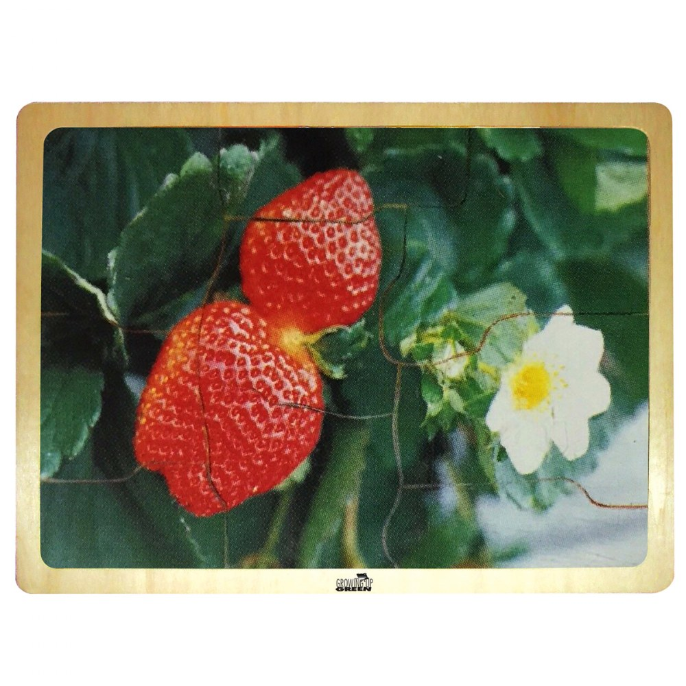 Alternate Image #2 of Fresh Fruits Puzzles - Set of 6 Puzzles - Promote Healthy Living and Healthy Eating