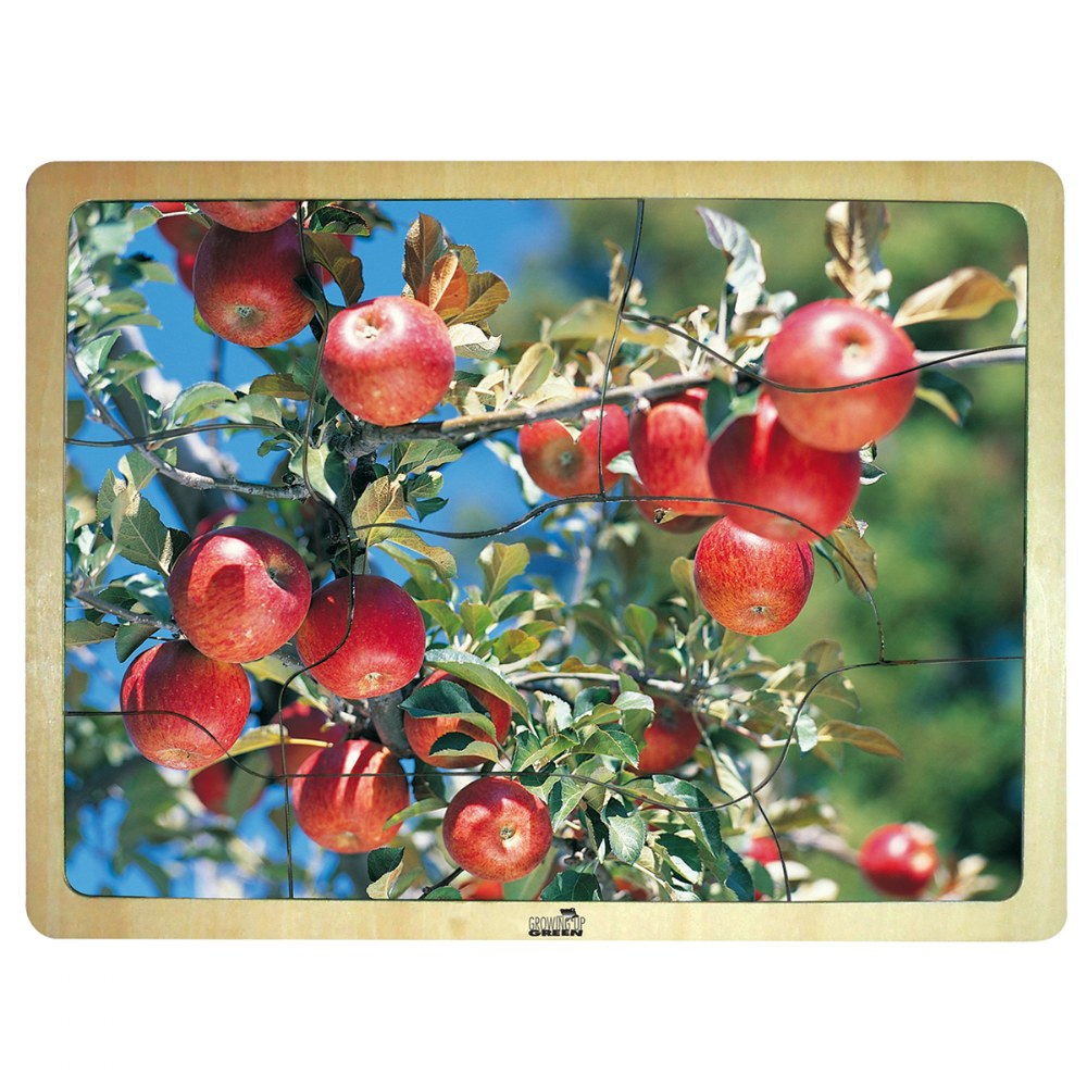 Alternate Image #3 of Fresh Fruits Puzzles - Set of 6 Puzzles - Promote Healthy Living and Healthy Eating