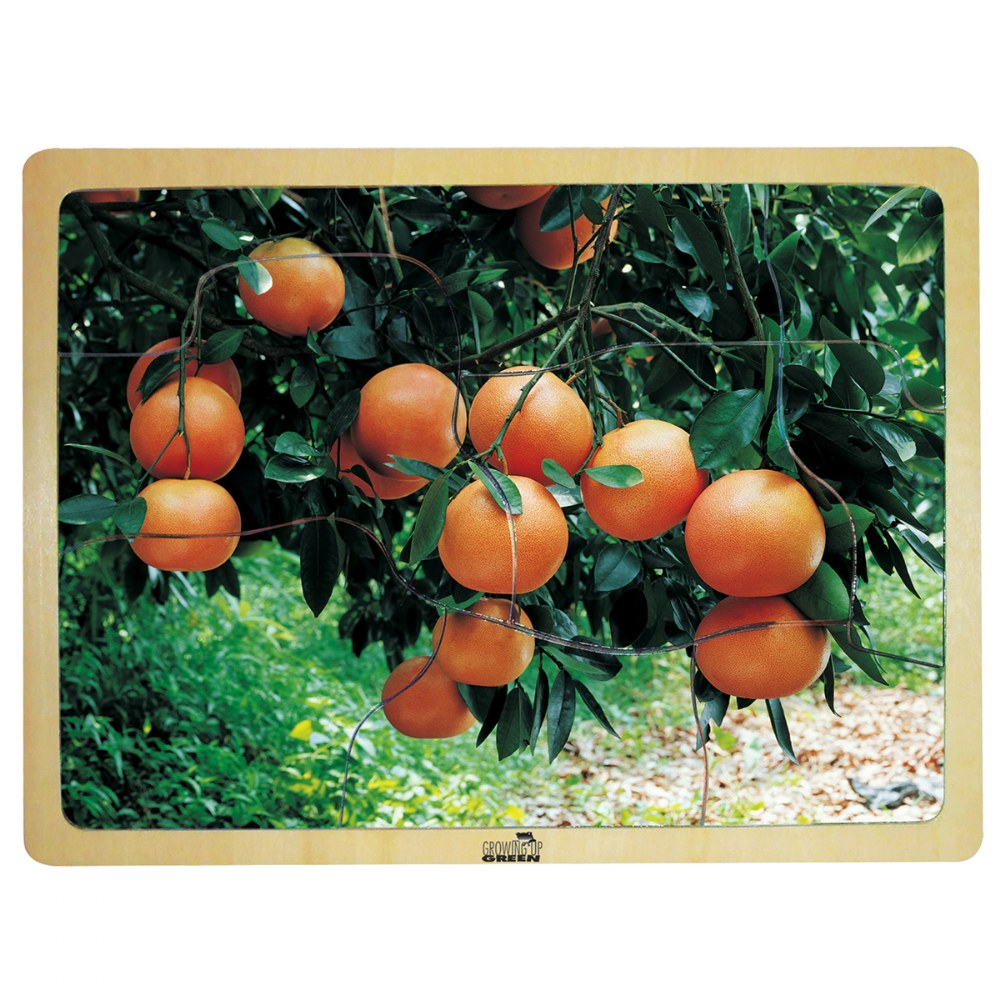 Alternate Image #4 of Fresh Fruits Puzzles - Set of 6 Puzzles - Promote Healthy Living and Healthy Eating