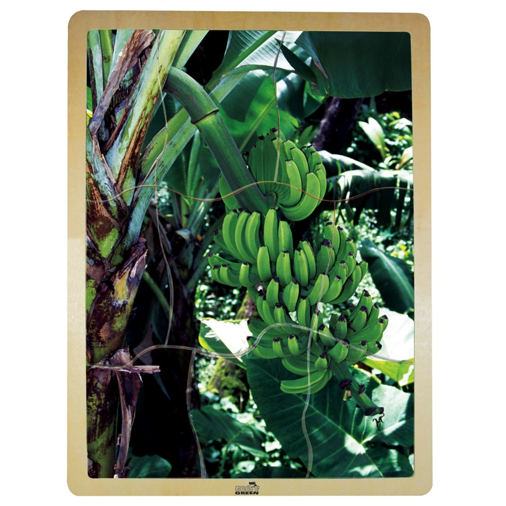 Alternate Image #5 of Fresh Fruits Puzzles - Set of 6 Puzzles - Promote Healthy Living and Healthy Eating