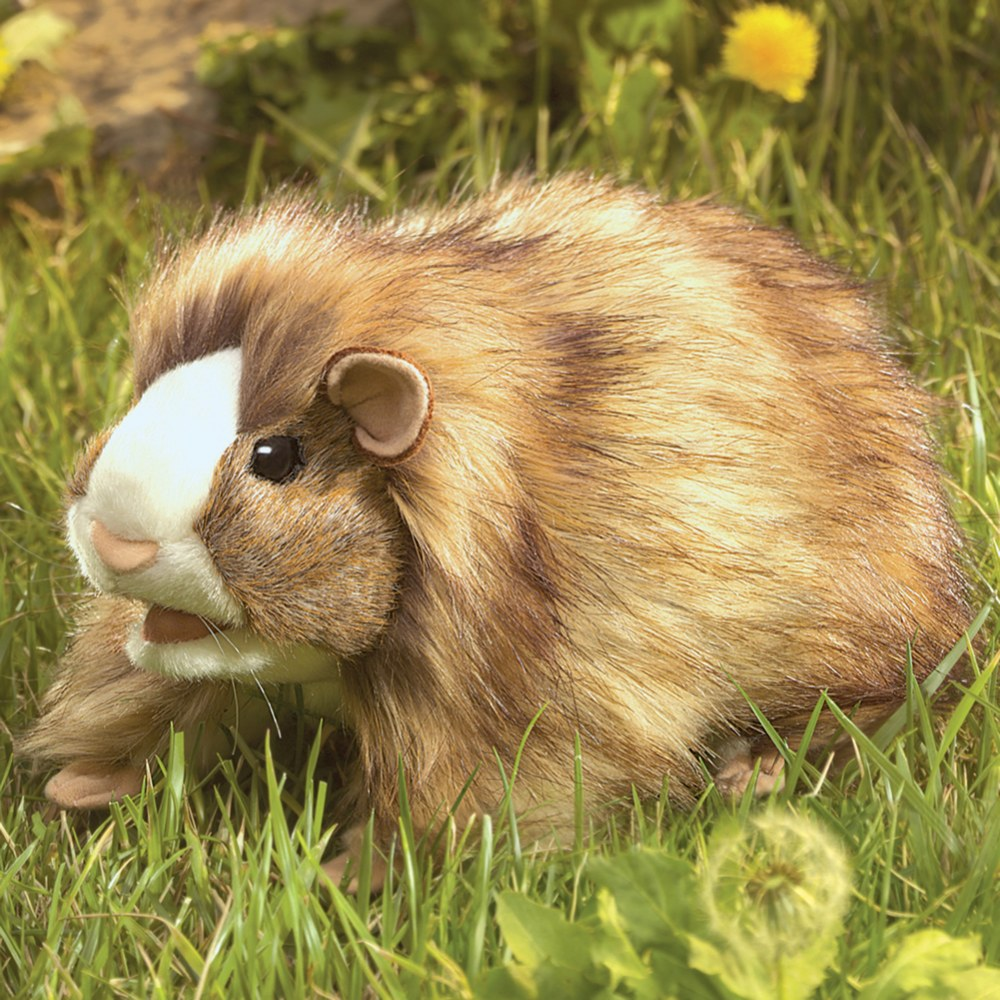Alternate Image #3 of Guinea Pig Hand Puppet