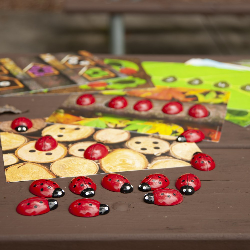 Alternate Image #6 of Ladybug Stones and Activity Cards