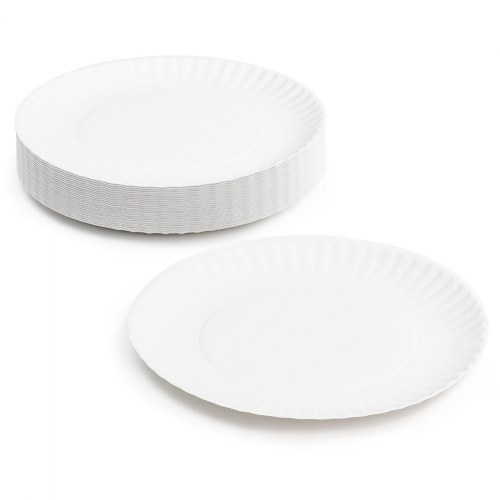 "9"" Paper Plates - 100 Count"