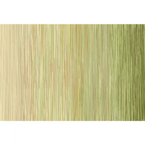 Sense of Place Nature's Stripes Green Carpet - 6' X 9""