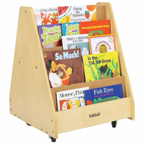sc 1 st  Kaplan Early Learning & Carolina Double Sided Book Display