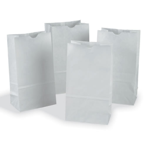 White Craft Bags - Set of 100