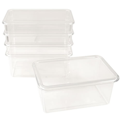 Storage Bins with Lids (Set of 5)