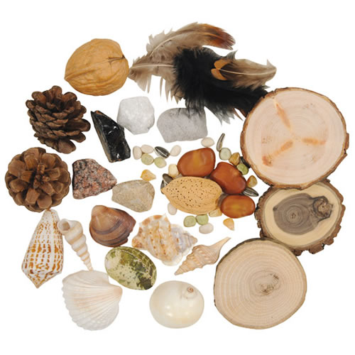Land & Sea Nature Loose Parts Collection