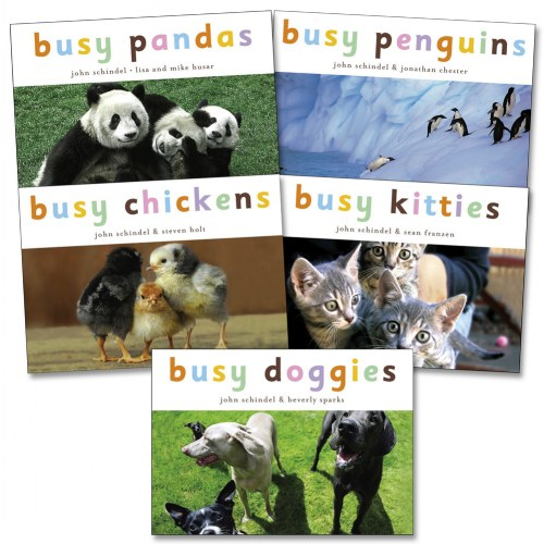 Busy Animals Board Books - Set of 5