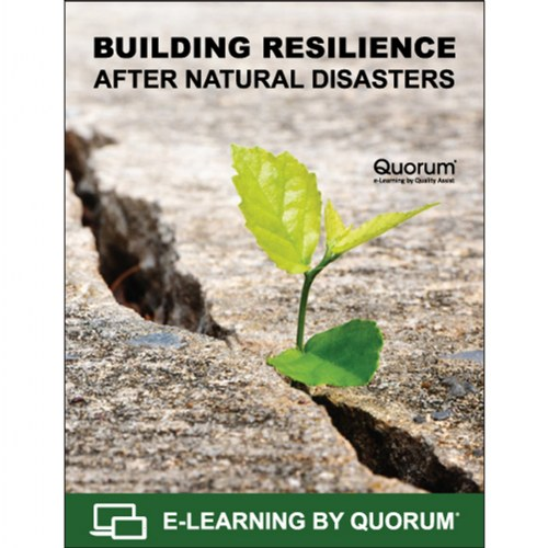 Building Resilience After Natural Disasters
