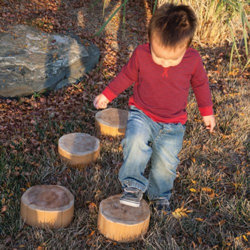Wood Stepping Slices - Each