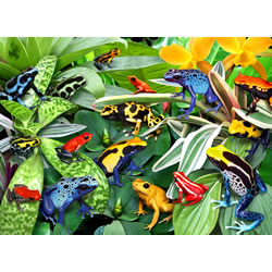 Friendly Frogs Puzzle 300-Piece Jigsaw Puzzle