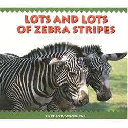 Lots and Lots of Zebra Stripes - Paperback