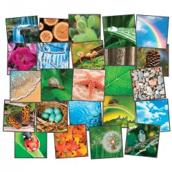 Photo-Fun Nature's Beauty Carpet Squares (Set of 24)