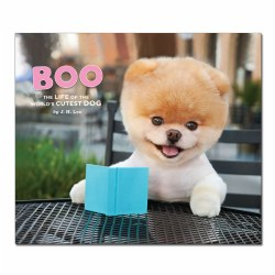 Boo: The Life of the World's Cutest Dog - Hardback