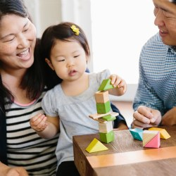 Tegu Tints Magnetic Wooden Blocks