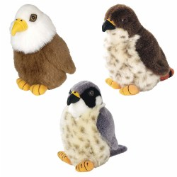 North American Birds of Prey (Set of 3)