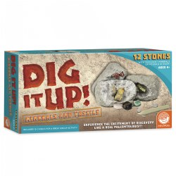 Dig It Up! Minerals & Fossils