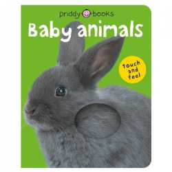 Baby Animals Touch & Feel - Board Book