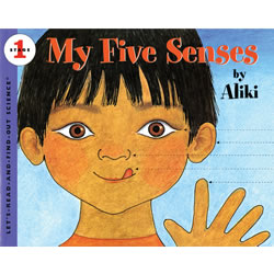My Five Senses - Paperback