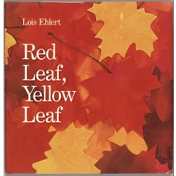 Red Leaf, Yellow Leaf - Hardback
